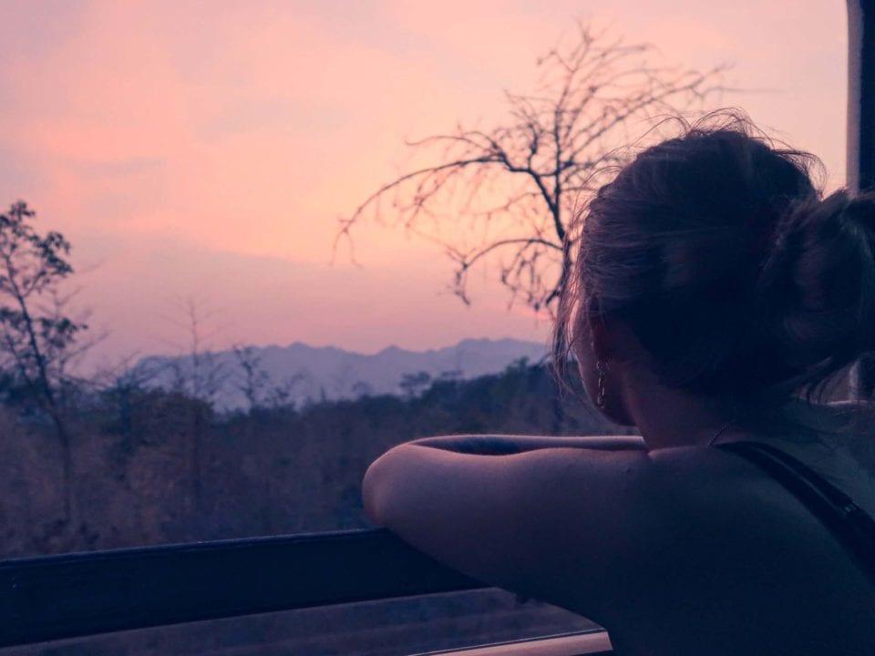 Ich sitze im Zug bei offenem Fenster und schaue auf den pinken Himmel