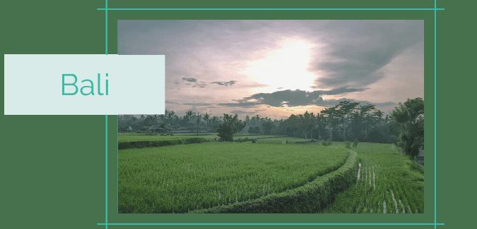 Reiseblog Reiseziele Asien Bali
